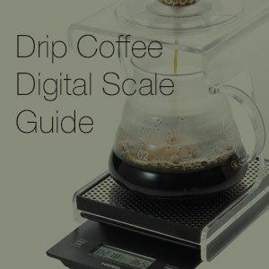 Digital Scale Guide